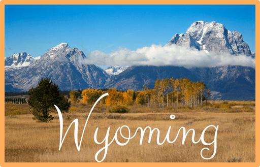 Wyoming EBT Card