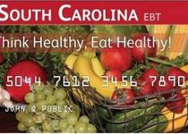 South Carolina EBT Card Balance