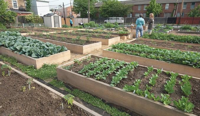 Make Money Farming a Small Farm