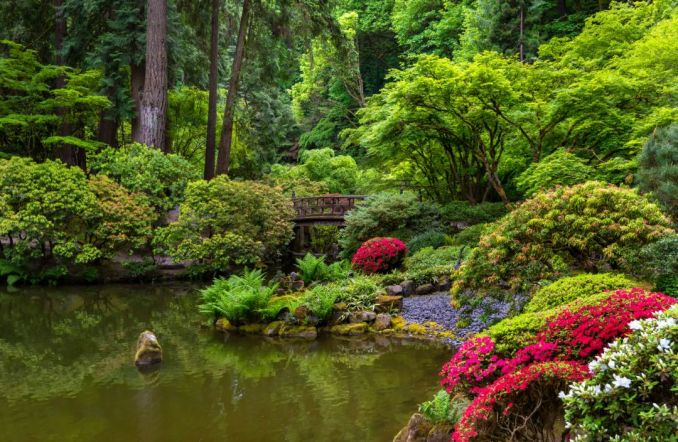 Amazing Places to Be and Things to Do in Oregon for Fun
