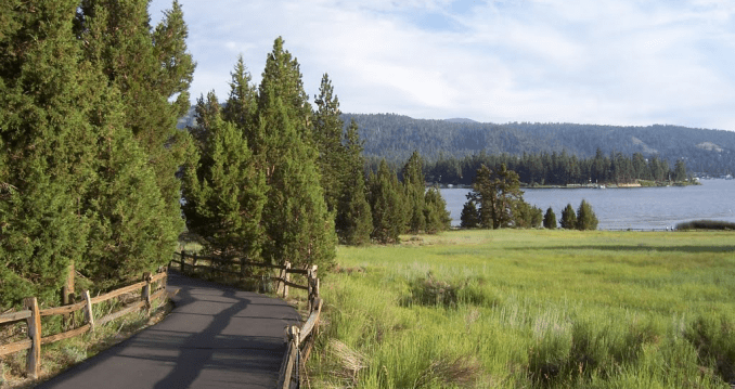 17 Fun Things to Do in Big Bear with Dogs of all Kind