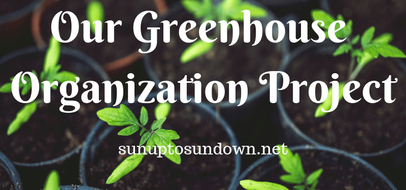 Our Greenhouse Organization Project