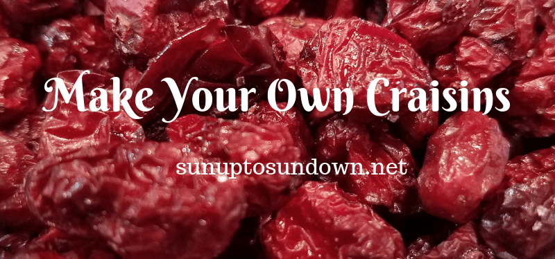 Make Your Own Craisins