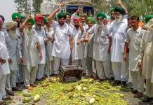Farmers throw vegetables on a road during a state-wide protests, at Bagha Purana in Moga district of Punjab on Friday
