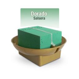BASE CLICK SALSERA DOCENA DORADO