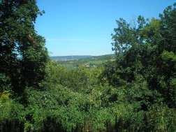 Csíki-hegyek, kilátás Budakeszire