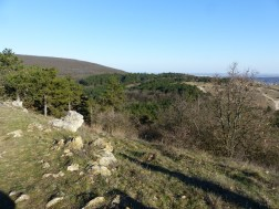 Magas-Frank-hegy és a Farkas-hegy a Szekrényes-hegyről