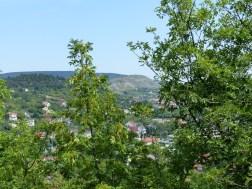 A Bobald tanösvény el nem vadult részeit újabban kőomlásveszély miatt hatóságilag lezárták.
