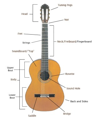 Basic Knowledge of Guitar