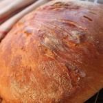 Yhden yön juttu – Vaivaamaton leipä