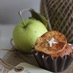 Muffinssimaakarina