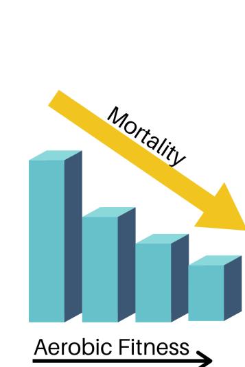 aerobic fitness and mortality