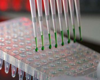 B.T.S.-Bio-analyses-et-contrôles-(BIOAC)