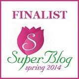 BannerFinalistSpringSuperBlog2014