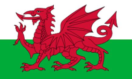 drapeau avec les couleurs du poireau