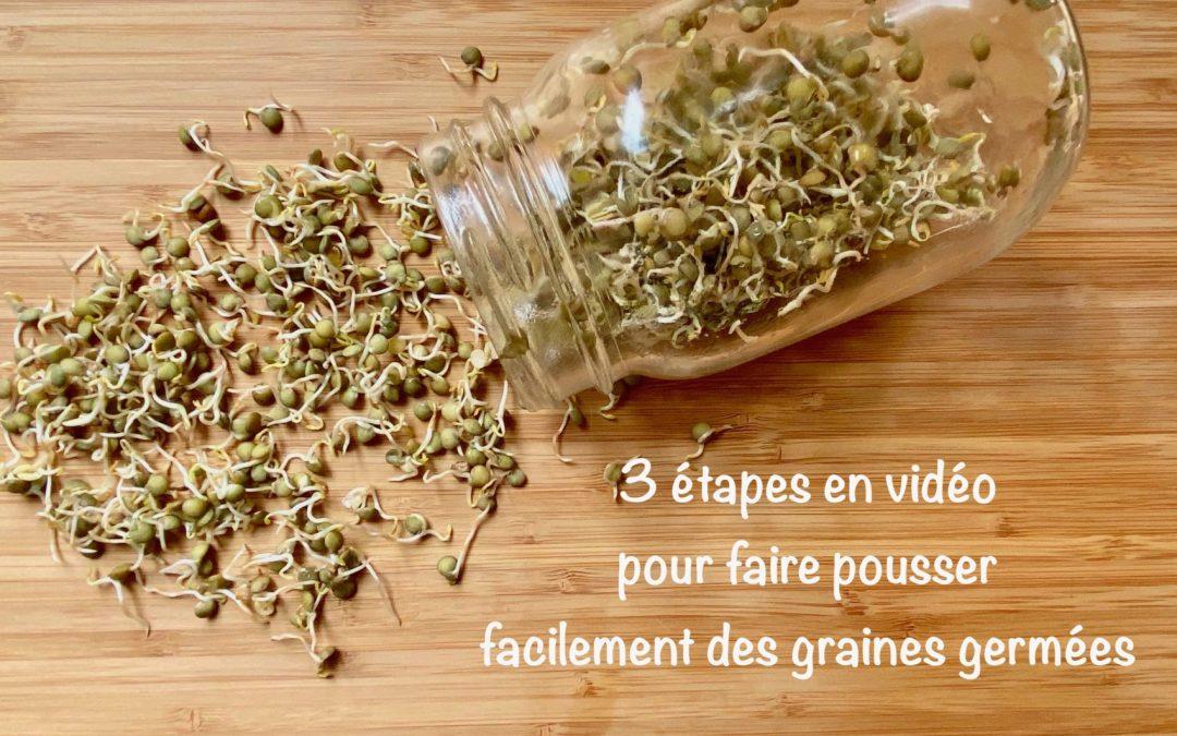 Comment faire pousser des graines germées ?