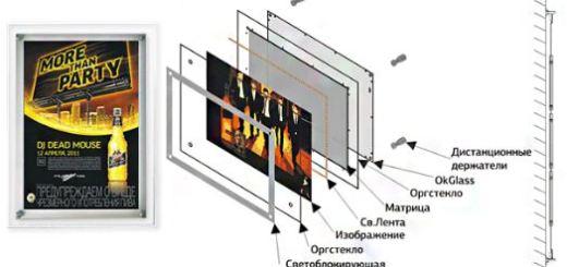 Структура лайтикса