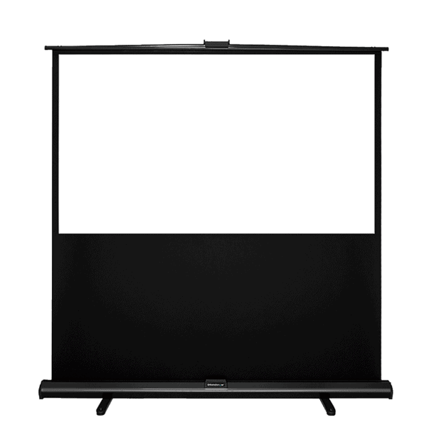 Portable Pull Up Screen