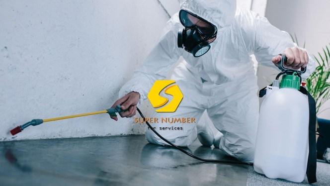 شركات مكافحة الحشرات في ابوظبي