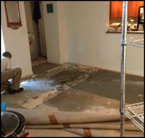 28-las-vegas-water-damage-restoration-company-repairs-removal-Property-restoration-Services-1.png