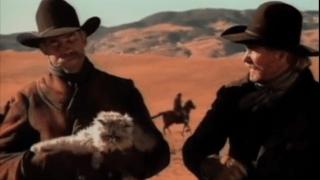 2000_EDS_Cat_herding