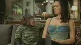 2006 Bud Light –  Chimp