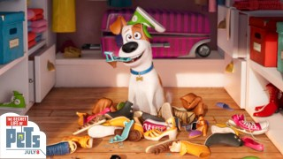 "Universal Pictures 2016 Super Bowl 50 Ad ""The Secret Life Of Pets"""