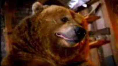 2004 PEPSI – Bears Find Food