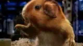 2007 BLOCKBUSTER – Mouse