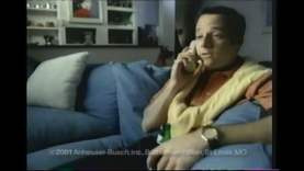 SuperBowl-Ads.com Top 5 Ads of 2001 (Super Bowl XXXV)