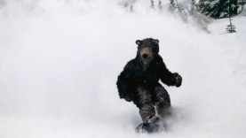 Labatt_Blue_Undomesticated_Snowboarding_2014