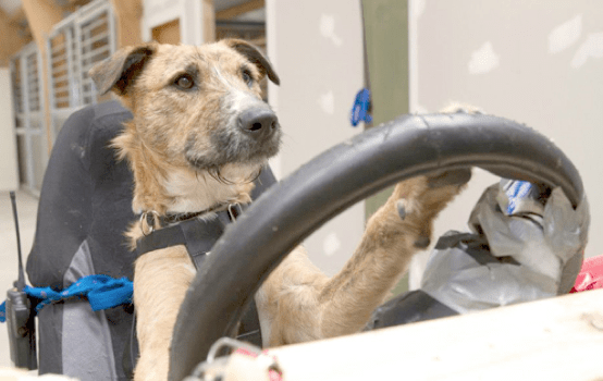 Screen Shot 2014 09 25 At 2.45.47 PM