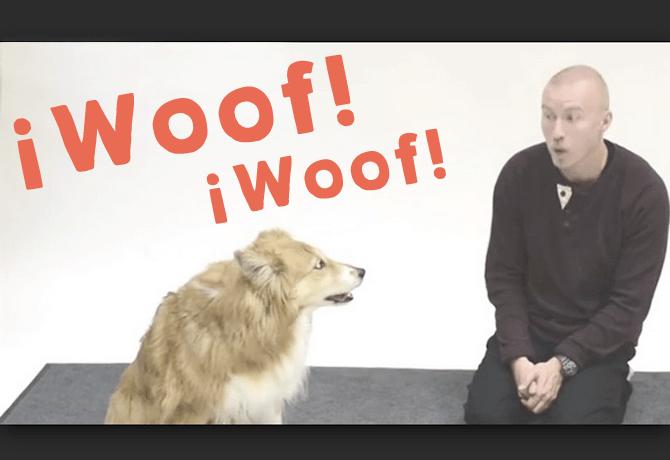 Perros y ladridos humanos