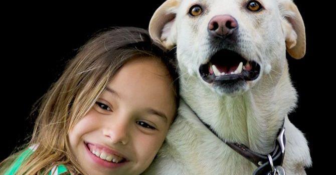 Los Perros Pueden Comprender Partes De Nuestro Lenguaje