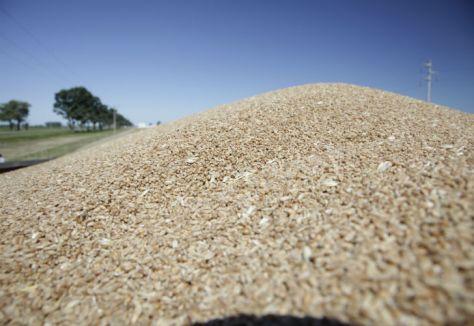 FOTO: Ministerio de Agroindustria.