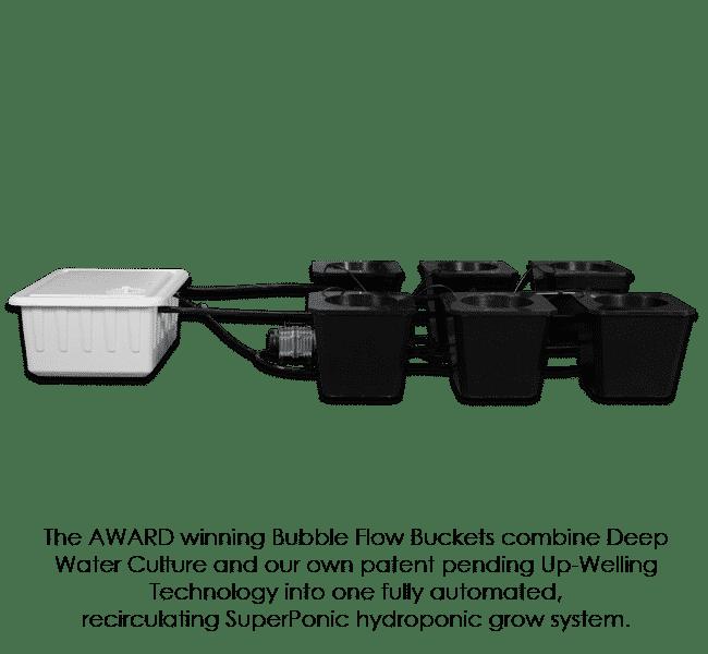 Automated Hydroponic Grow Box