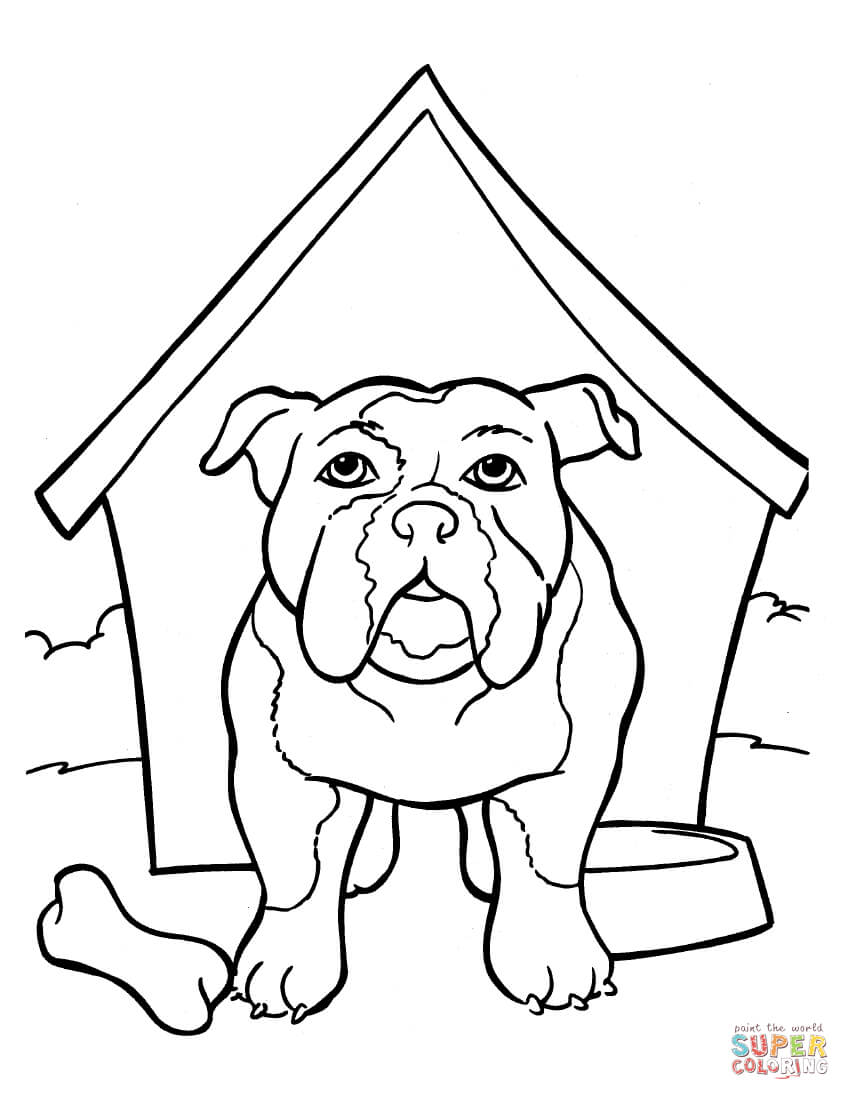 Bulldog Colouring Pages : bulldog, colouring, pages, Bulldog, Kennel, Coloring, Printable, Pages