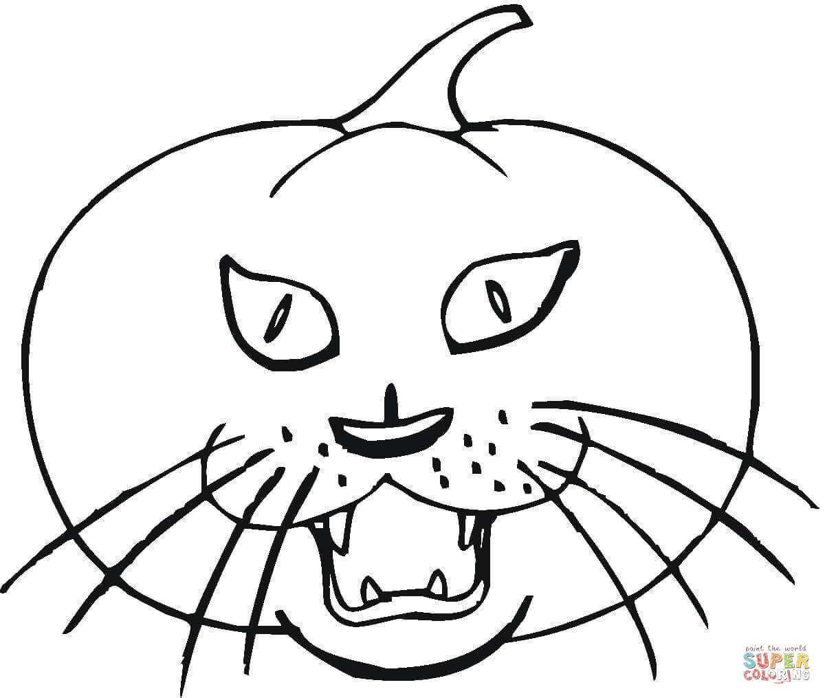 Cat In A Pumpkin Coloring Page Pusheen Coloring Book Pusheen