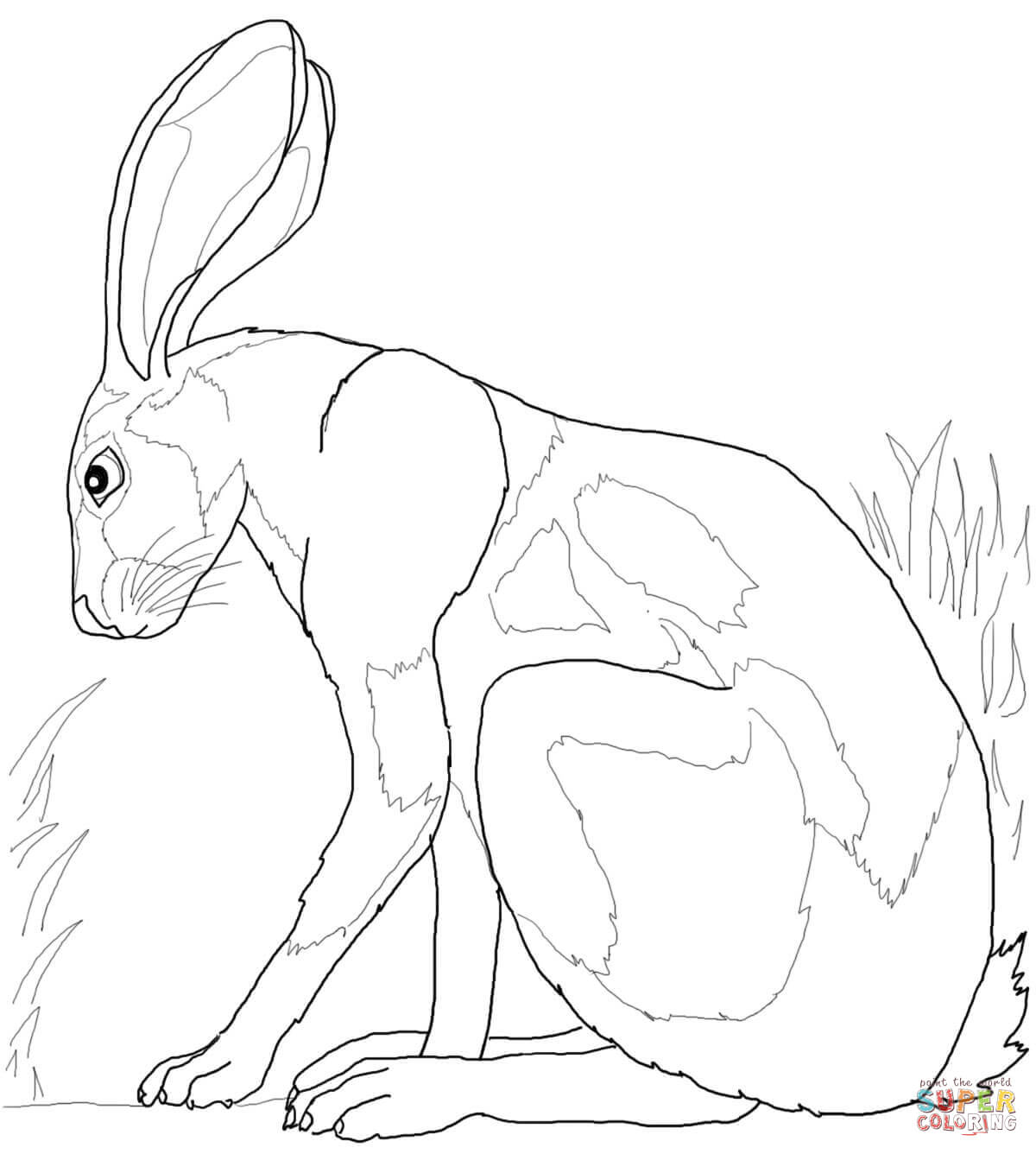 ohio poultry shows 2013 auto electrical wiring diagram Trane Wiring Diagrams desert hare coloring pages sketch coloring page