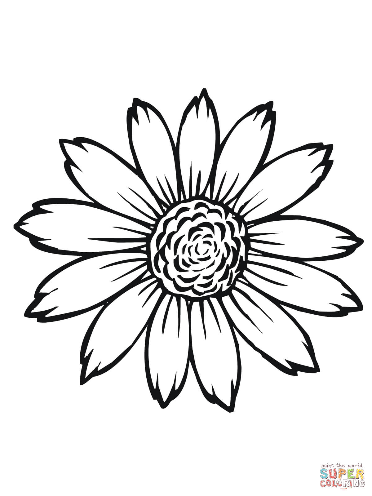 Flowering Head Of Sunflower Coloring Page