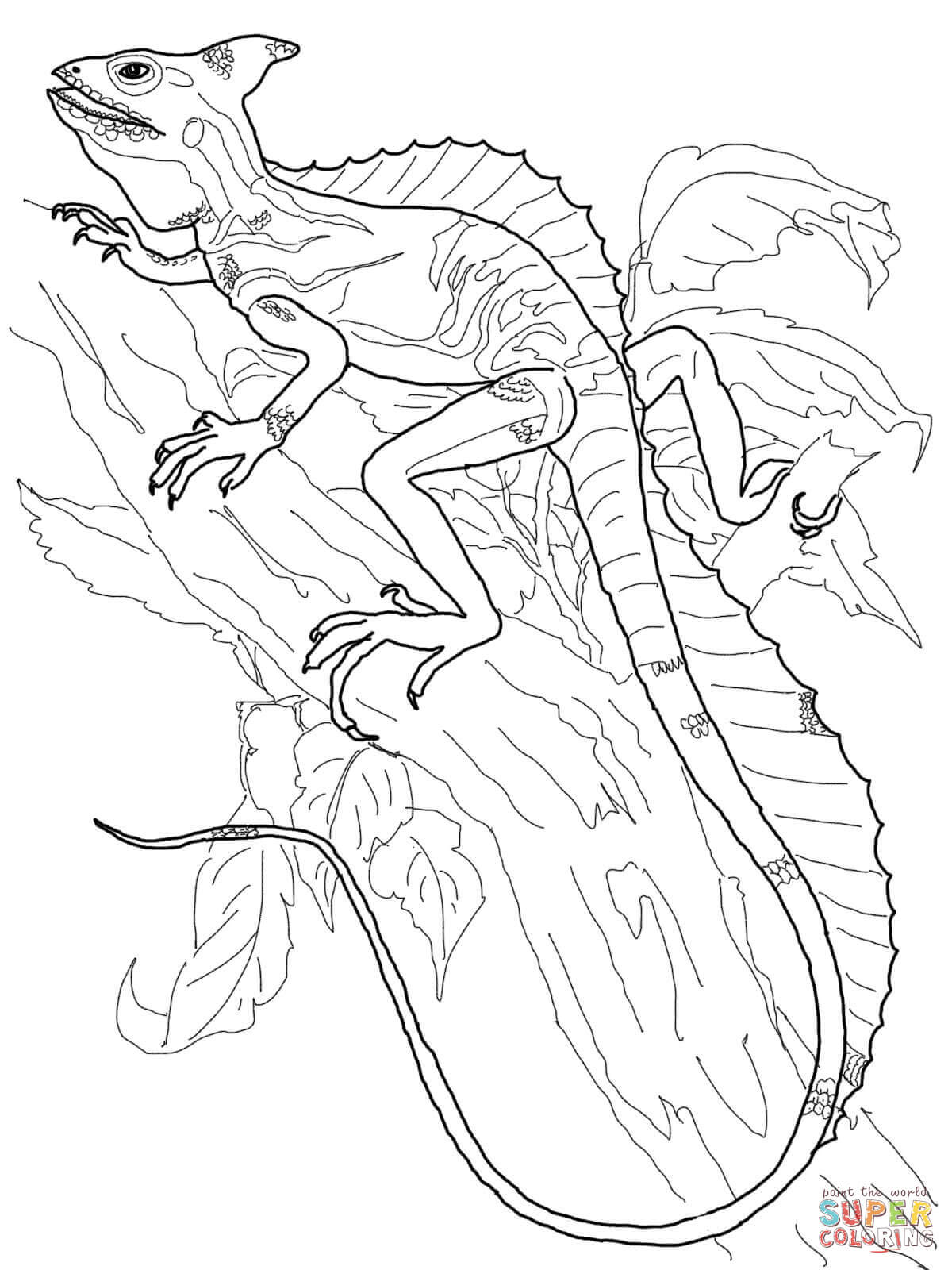 Lizard Coloring Sheet : lizard, coloring, sheet, Basilisk, Lizard, Coloring, Printable, Pages