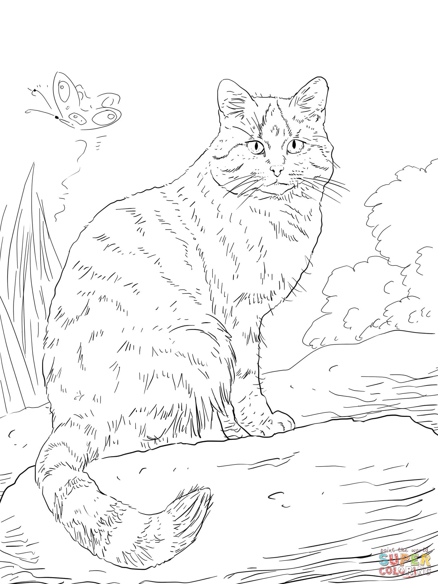 A Cat Sleeping Hard Coloring Page Animal Coloring Pages For Adults