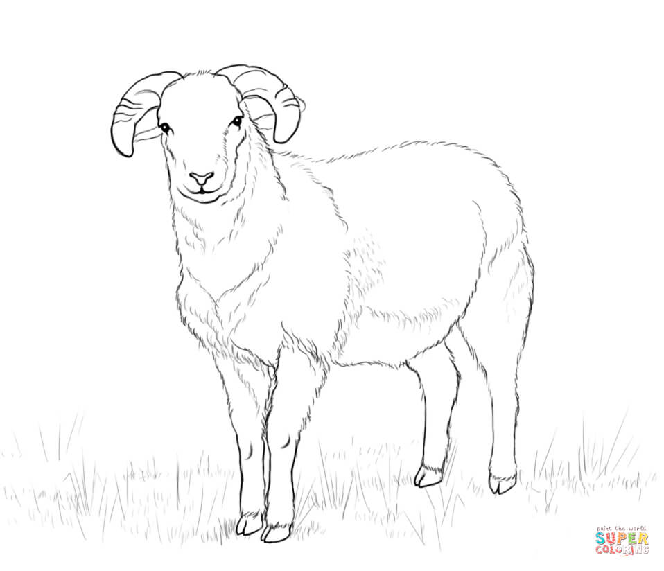 Lamb Drawings For Kids Shaun The Sheep Coloring Pages Csengerilaw