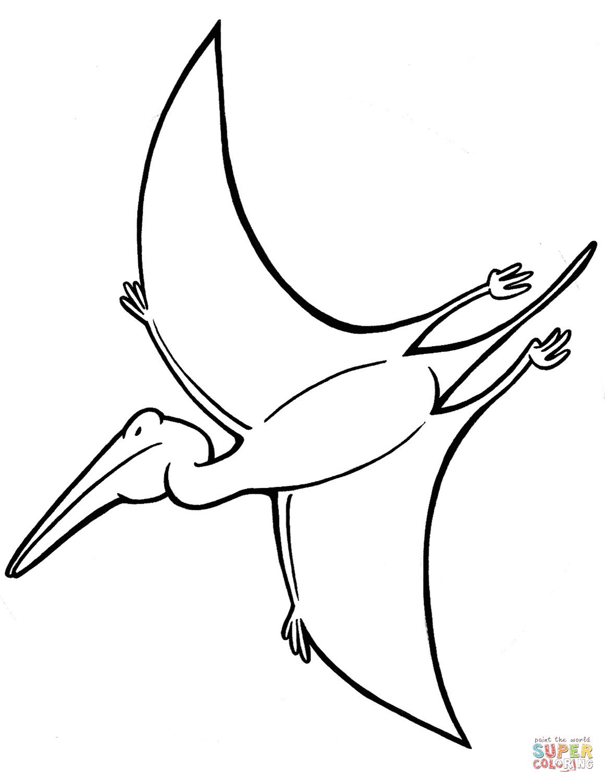 Pterodactyl Coloring Page : pterodactyl, coloring, Pterodactyl, Coloring, Printable, Pages