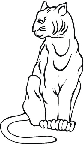 Mountain Lion Coloring Page : mountain, coloring, Mountain, Coloring, Printable, Pages