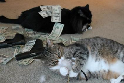 Moshi being gangsta while Jasmine plays (November)
