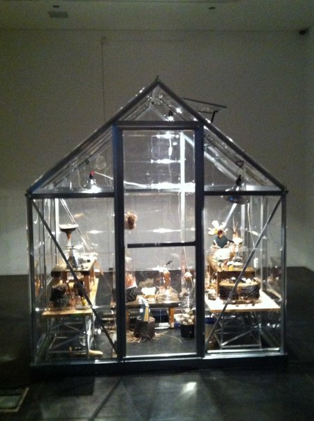Collector_glasshouse