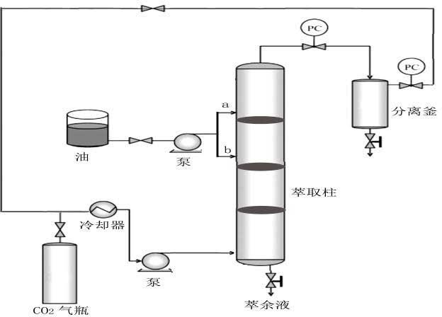Camellia oil countercurrent supercritical CO2 deacidification and deodorization