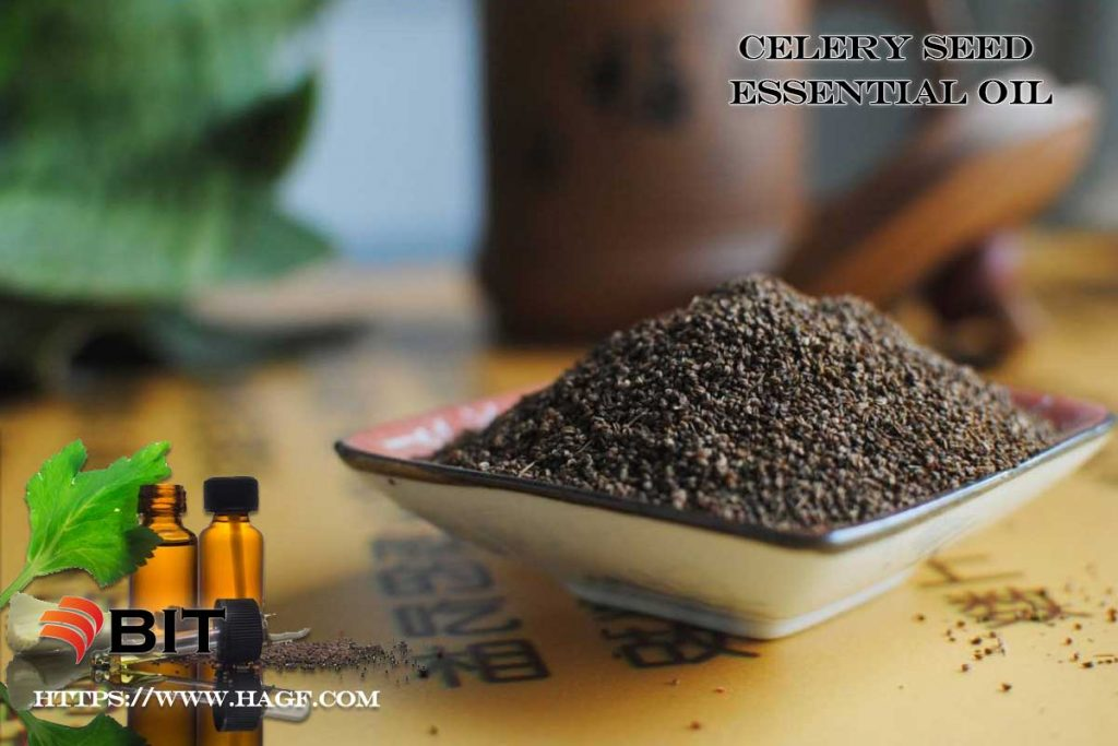Supercritical CO2 Extraction of Celery Seed Essential Oil