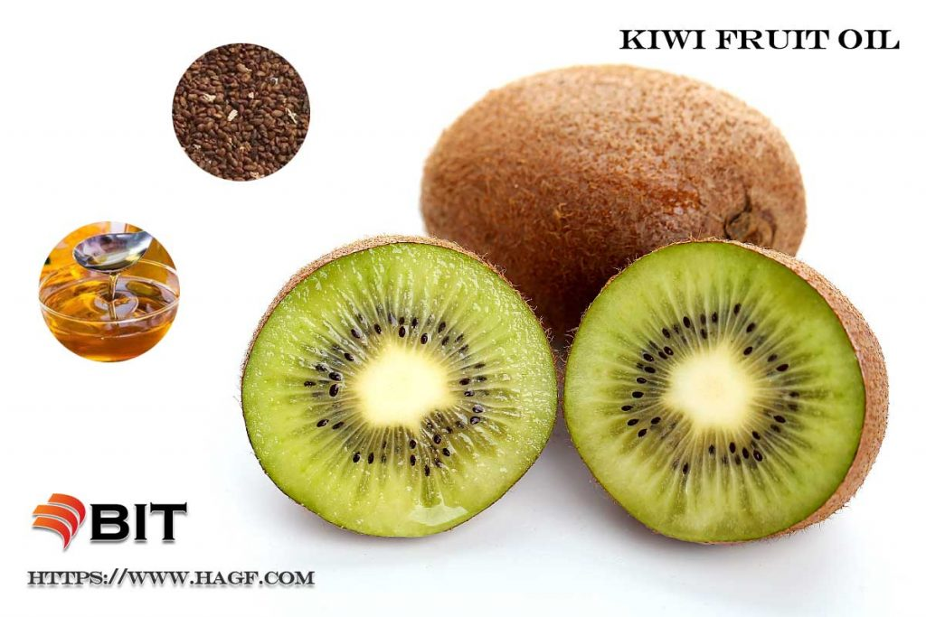 Supercritical CO2 Extraction of Kiwi Fruit Seed Oil